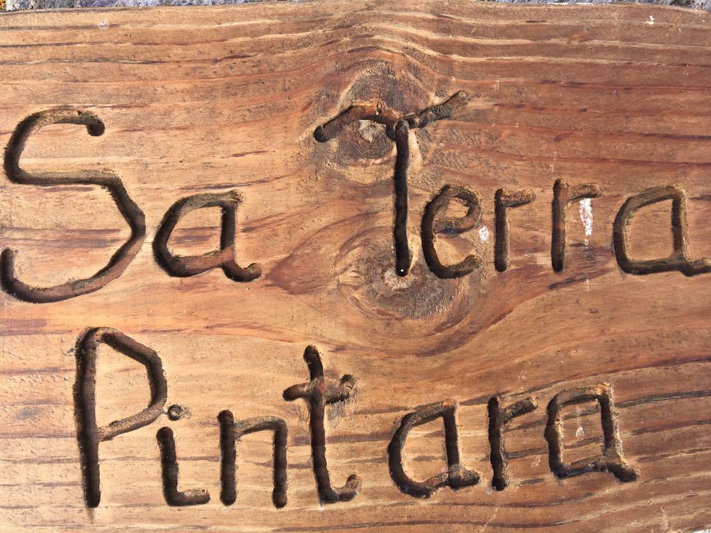 Sa terra pintara di Antonella Aiò